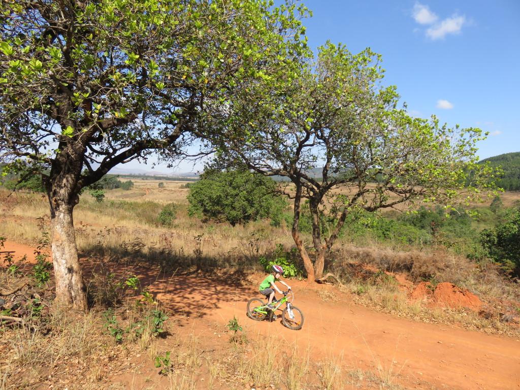 Op de fiets door een prachtig landschap