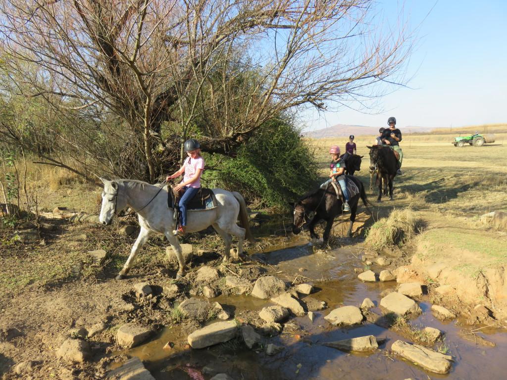 Paardrijden door Drakensbergen
