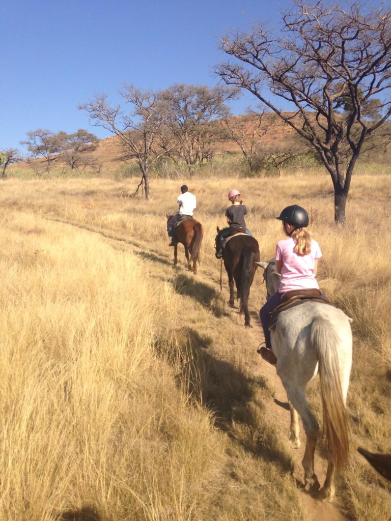 Heerlijk, op het paard genieten van de natuur en rust