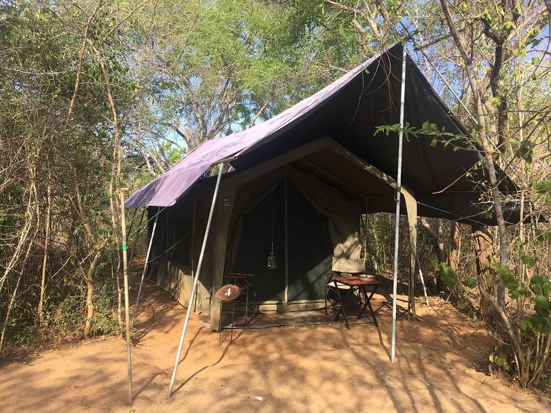 Tent op safari