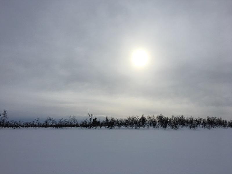 Excursies in Zweeds Lapland ijsvissen1