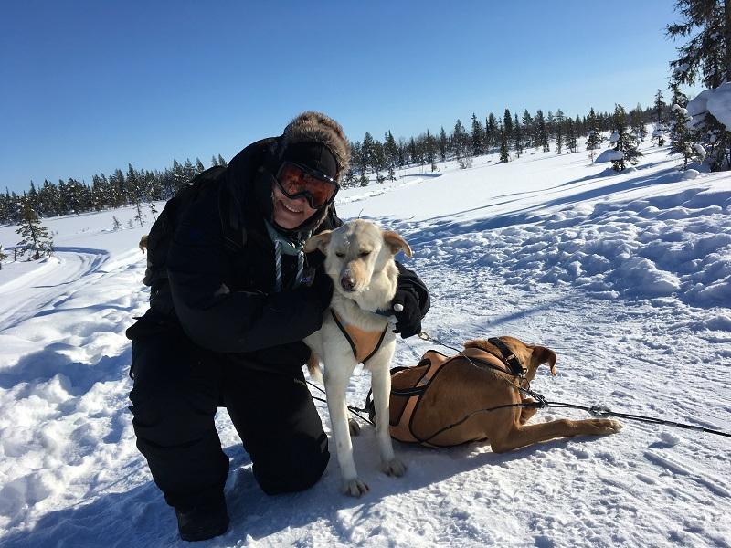 Excursies in Zweeds Lapland knuffelen met husky